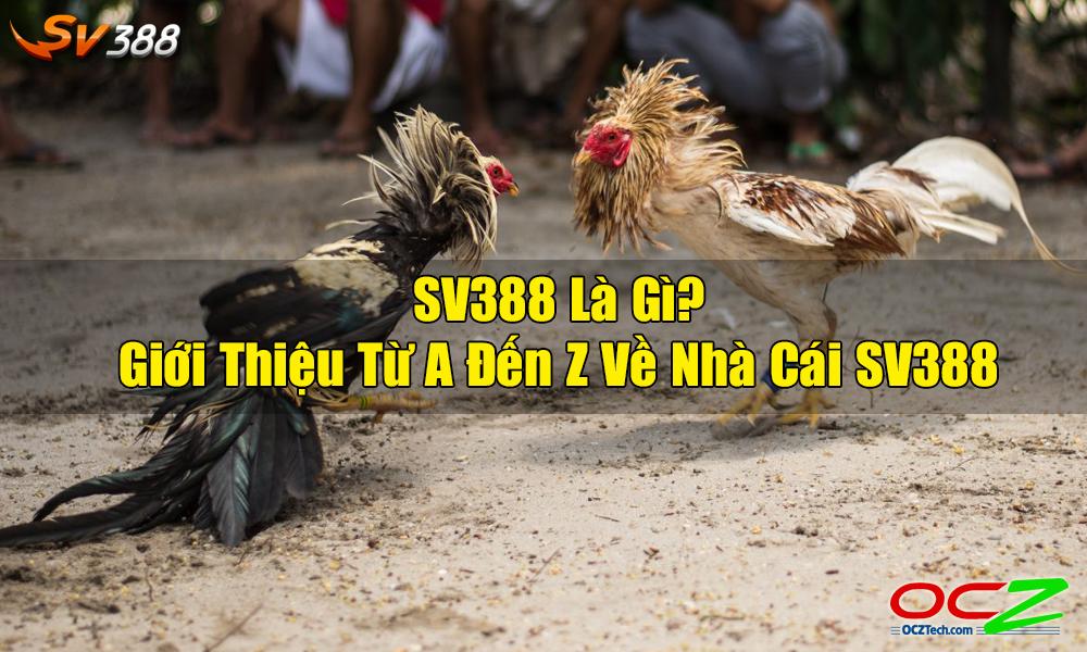 SV388 là gì?