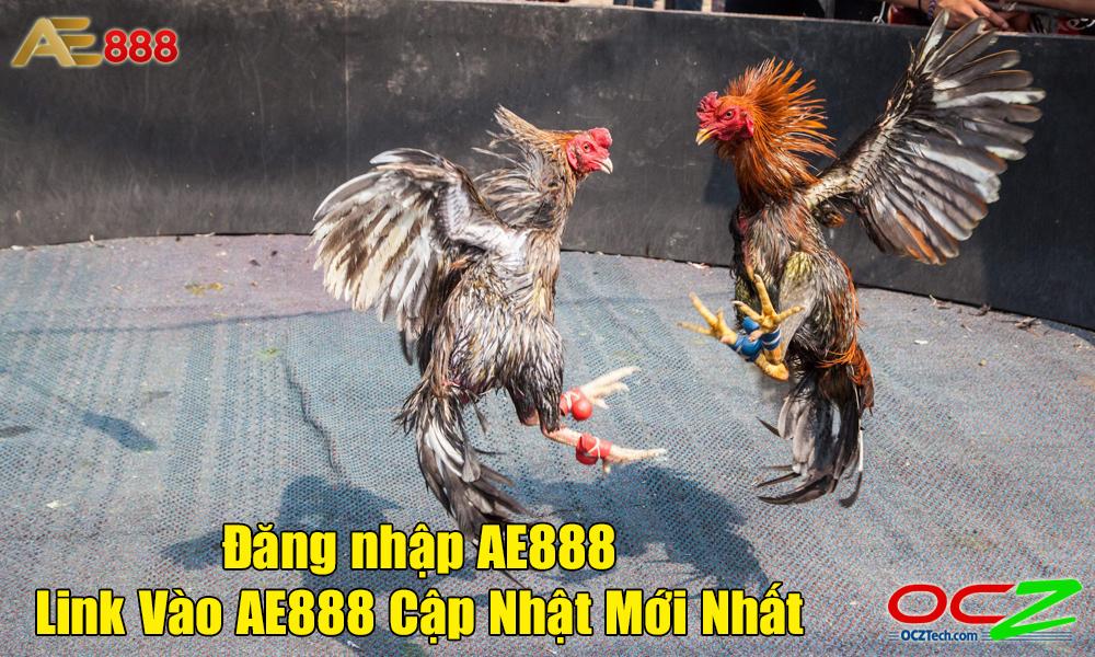 Hướng dẫn đăng nhập nhà cái AE888