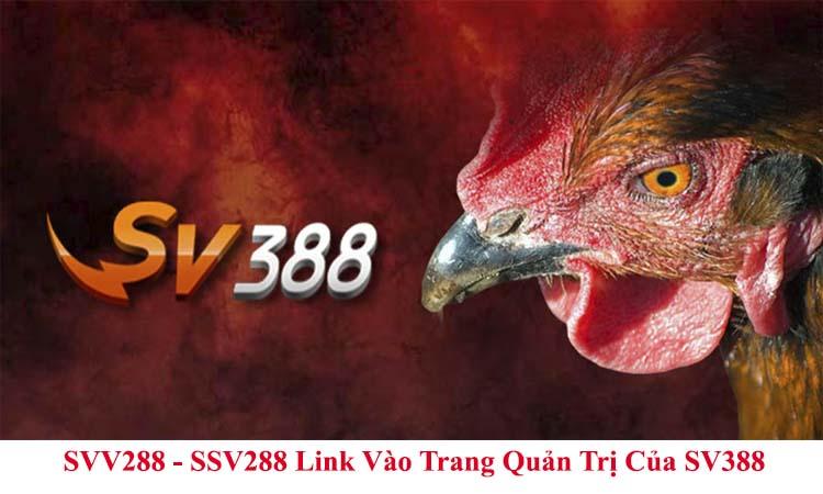 SVV288 - SSV288 Link Vào Trang Quản Trị Của SV388